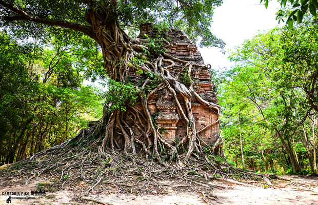 Full day Siem Reap - Sambor Prei Kuk